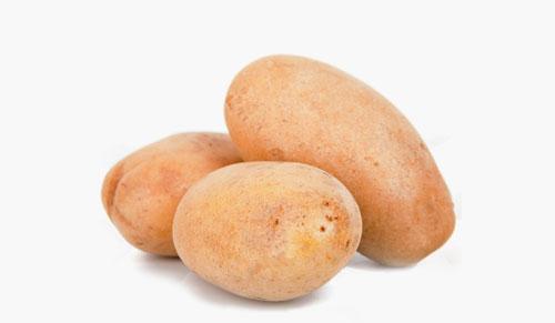 linda kartoffel kaufen